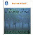 Didier Merah『Ancient Forest』ブログパーツ
